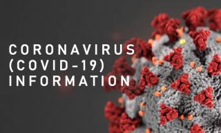 Coronavirus data